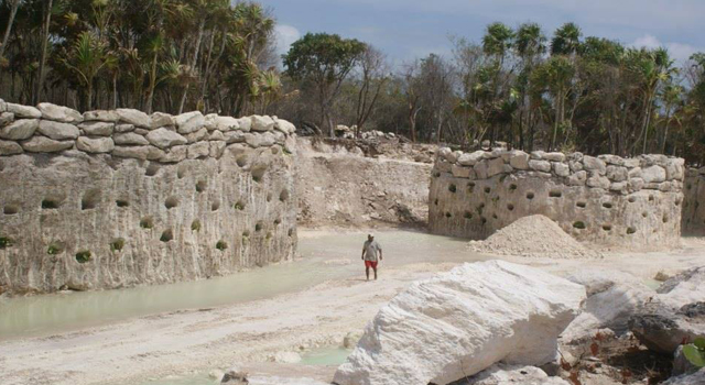 Los parques de grupo Xcaret han modificado drásticamente ecosistemas autóctonos