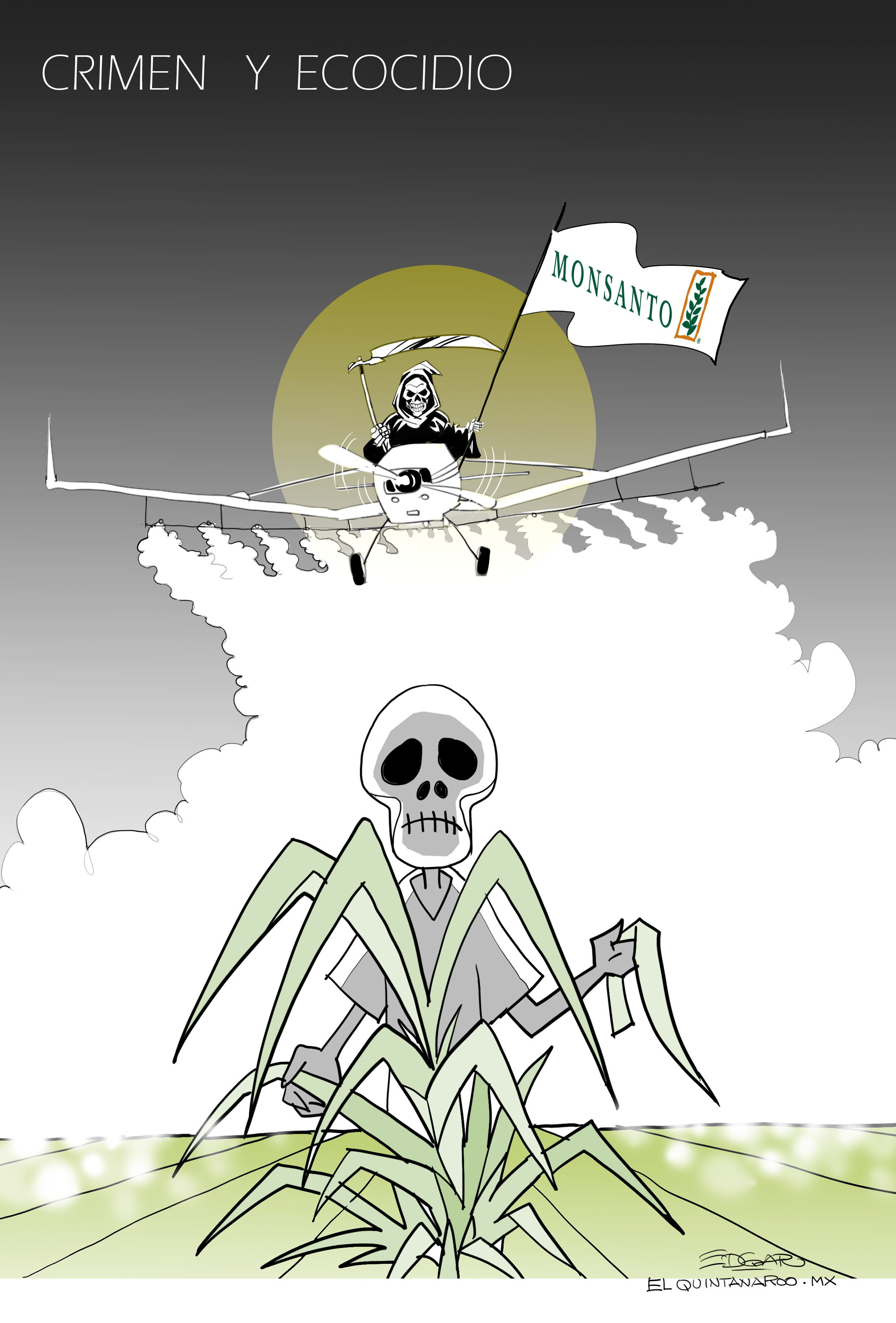 crimen y ecocidio